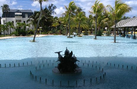 medence pálmafákkal