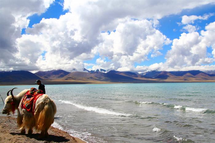 Yamdrok-tó, Tibet