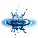 viz világnapja